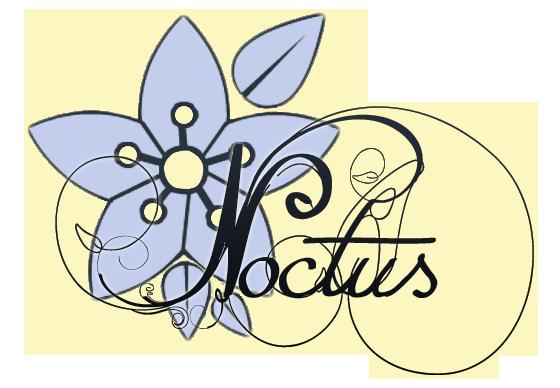 Connexion Logo111