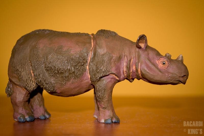Wonderful Sumatran Rhino(by Joan Milelire), Suraja arrived. Dsc_0012