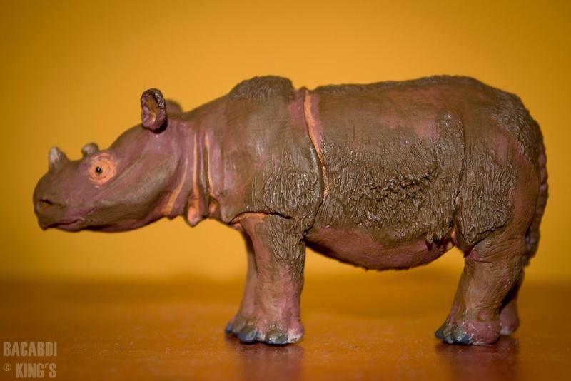 Wonderful Sumatran Rhino(by Joan Milelire), Suraja arrived. Dsc_0013