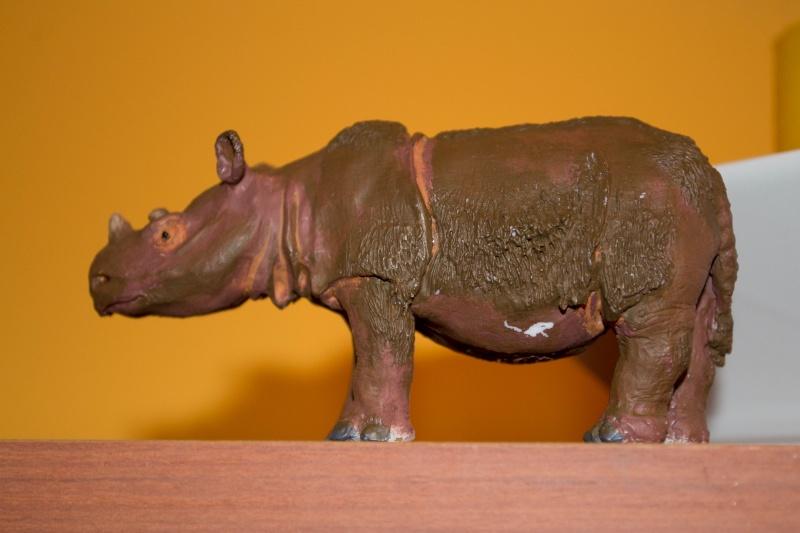 Wonderful Sumatran Rhino(by Joan Milelire), Suraja arrived. Dsc_0342