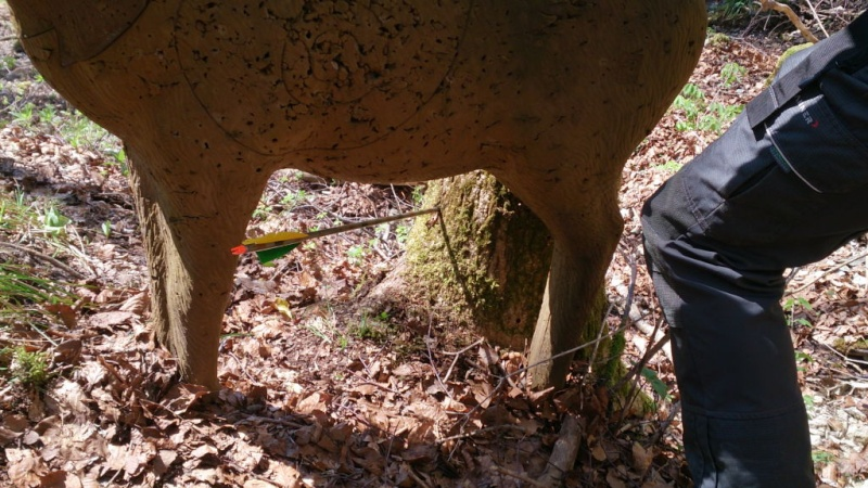 Sortie sur le parcours chasse de Belleydoux - Page 3 Dsc_0027