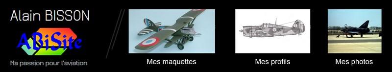 ABISITE : Ma passion pour l'aviation Bannie11