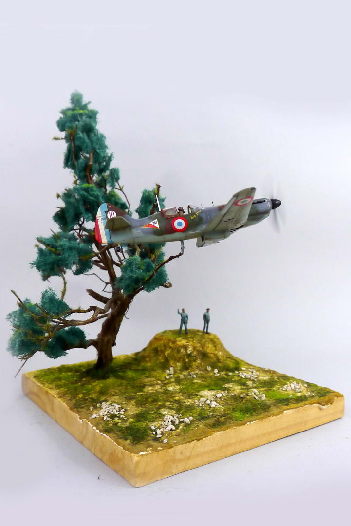 "IAR80 1/72, diorama ""dynamique"" D520ma10"