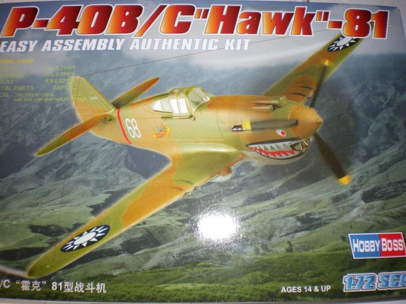 P40B/C (hobby boss) Imgp0222