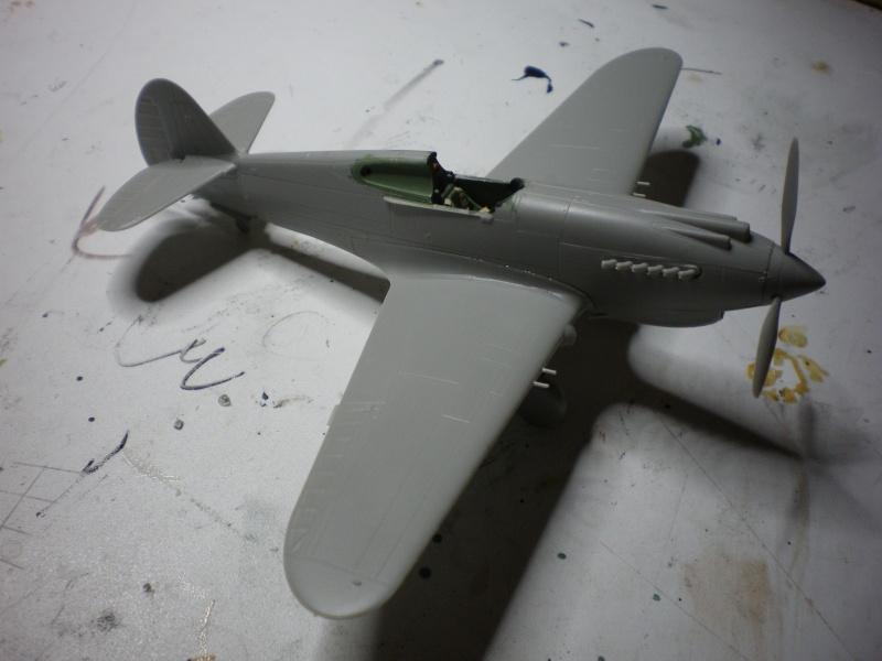 P40B/C (hobby boss) Imgp0225