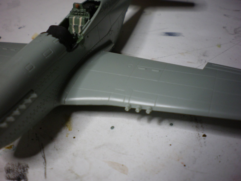 P 51D (academy) Imgp0229