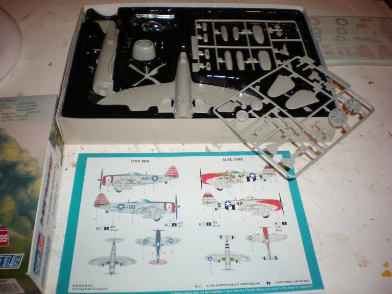 P47D (hobby boss) Imgp0348