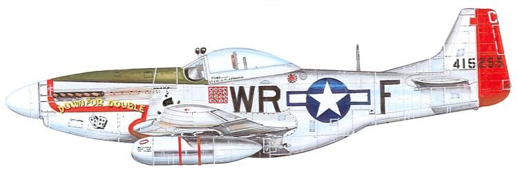 P 51D (academy) Wr-fpr10