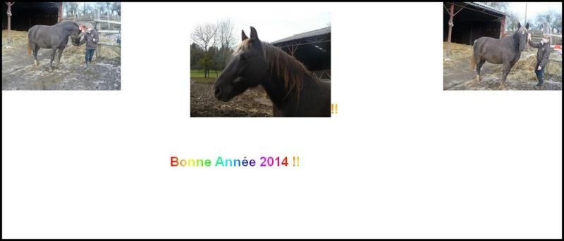 PELIPA - ONC Poney née en 2007 - adoptée en septembre 2014 par Ceed - Page 3 Carte_10