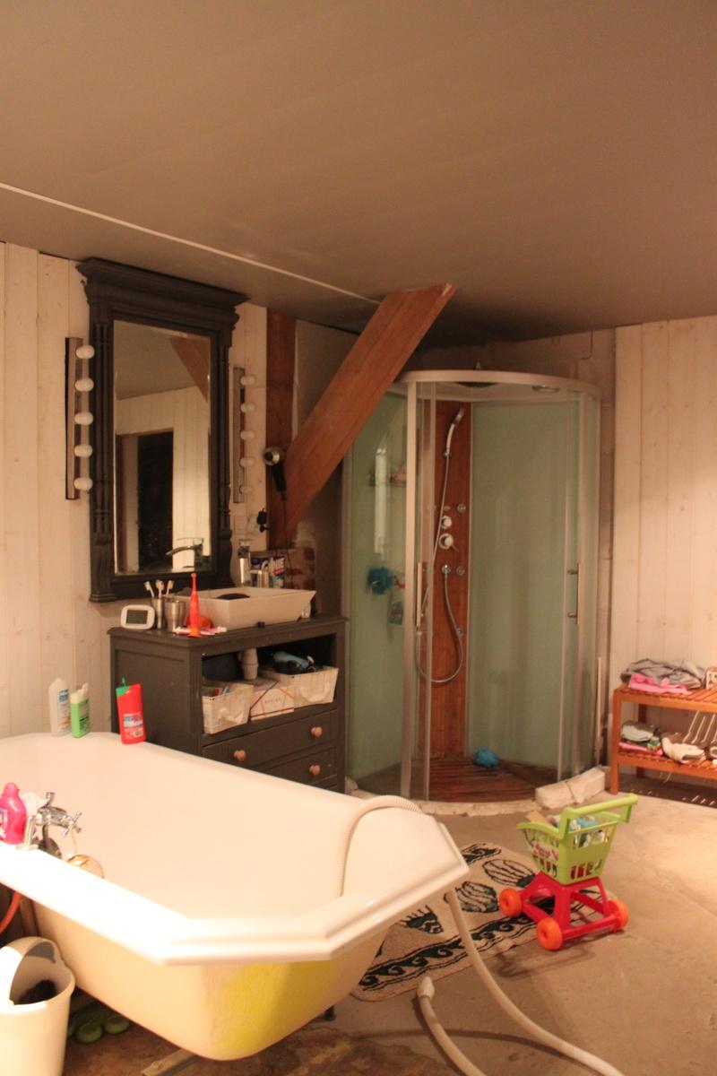 Deux salles d'eau en une, un projet fou pour petit budget ??? ENFIN LES PHOTOS !!!! Img_6110