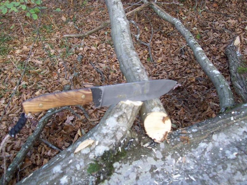 sortie automnale/ test de mon couteau de camp maison  100_2948