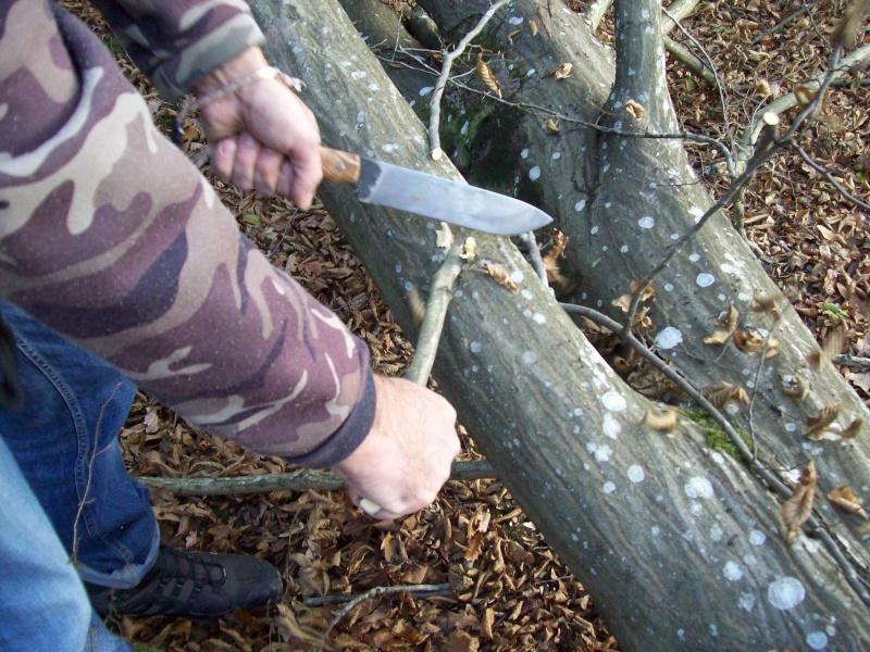 sortie automnale/ test de mon couteau de camp maison  100_2950