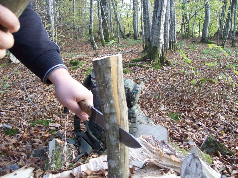 sortie automnale/ test de mon couteau de camp maison  100_2952
