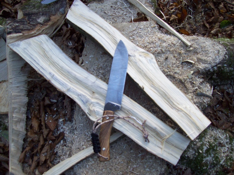 sortie automnale/ test de mon couteau de camp maison  100_3010