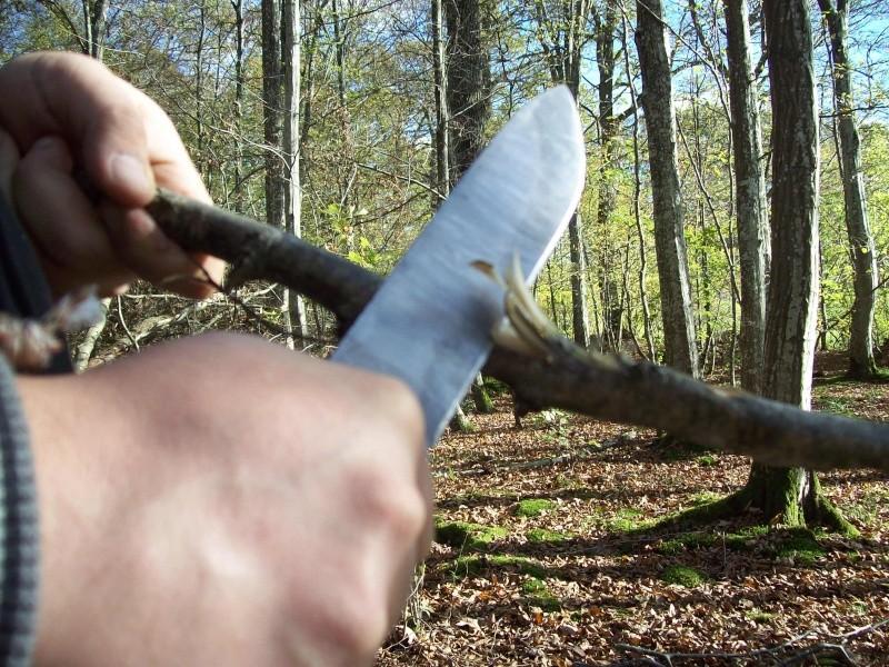 sortie automnale/ test de mon couteau de camp maison  100_3011