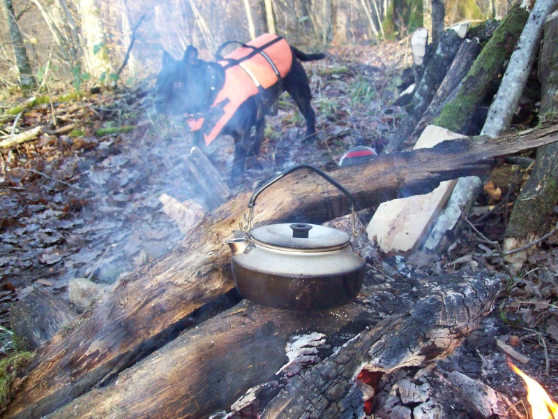 Sortie hivernale /test parang masuyo et boker bushcraft 100_3118