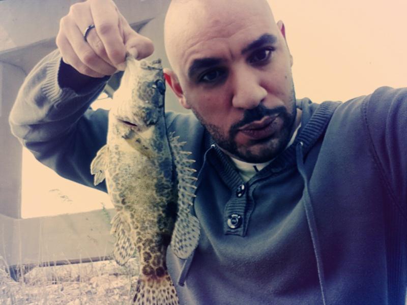 bass léopard Img_2010