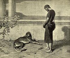 Les auteurs et leurs canins. - Page 3 Argos_10