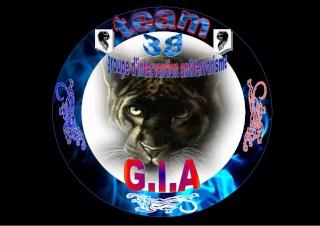 team G.I.A 38 G_i_a11