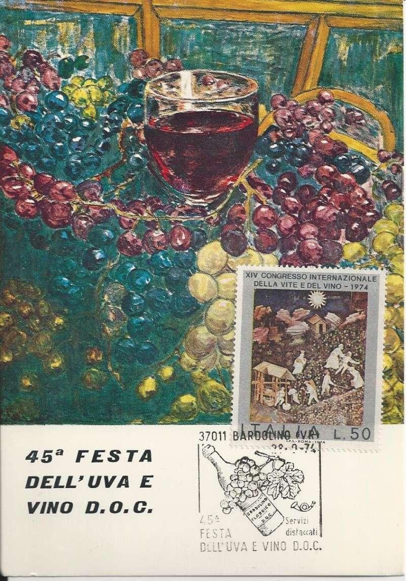 Wein und Weinanbau Bild40