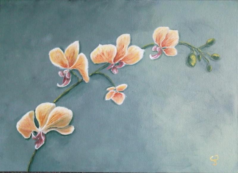 Mes petites barbouilles Orchid10