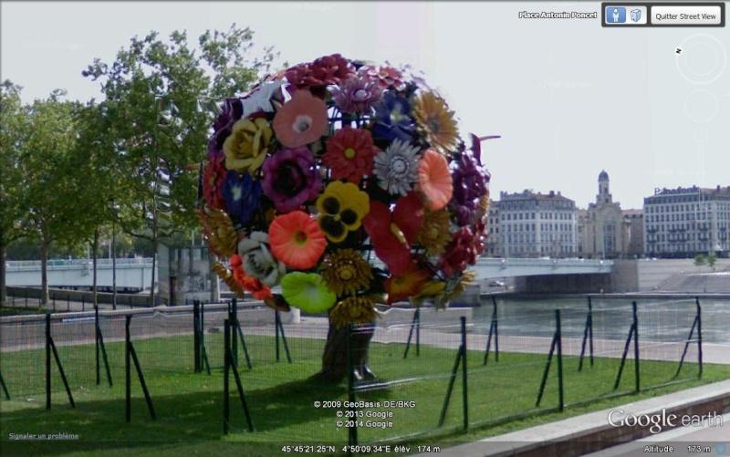 Un bouquet de fleurs - Lyon - Rhône - France Sv30