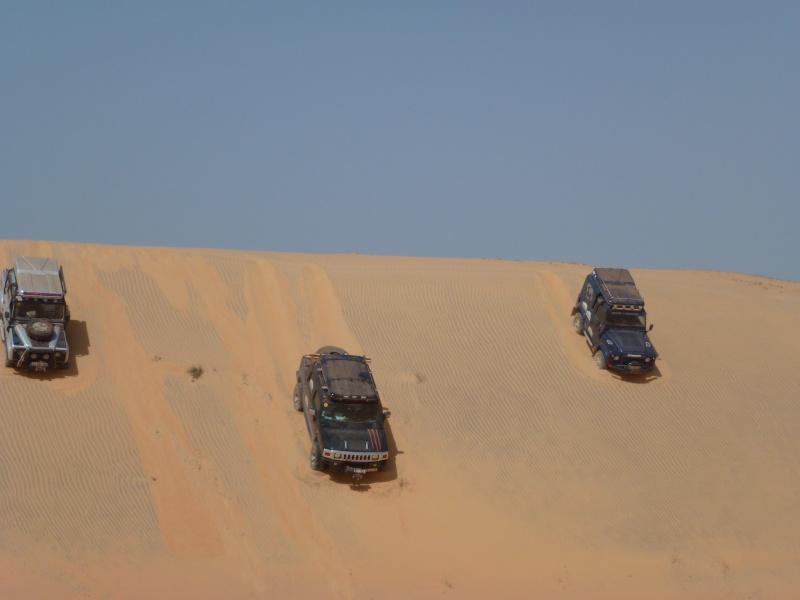 J'adore l'Afrique et ses déserts je souhaite beaucoup apprendre de vous. - Page 2 P1000313