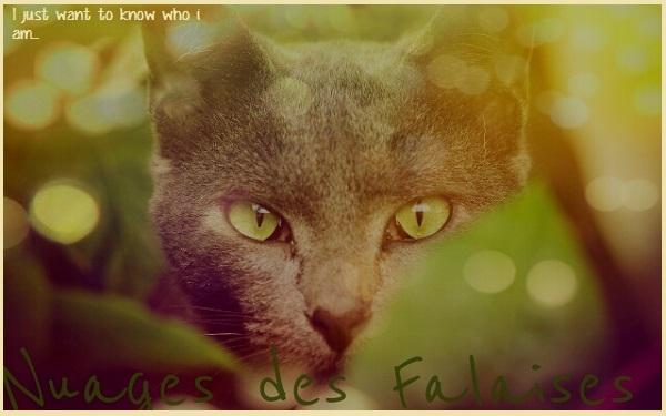 Griffe de jade  FINI Falais10
