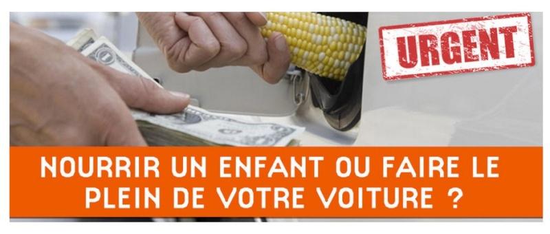 Agrocarburants : l'imposture. Agroca11