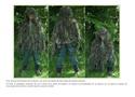 Tenue camouflage... Nouvea43