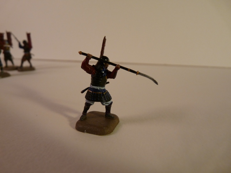 Samurai 1/72 - Sammelthema - - Seite 5 P1050413