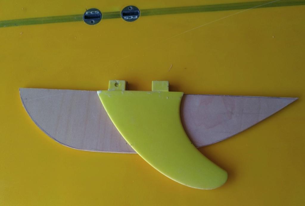 wing sup alternative au wingfoil  Captur87