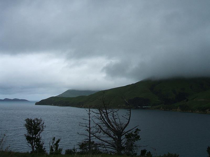 new zealand- south island tour- 6000kms Sth_is32