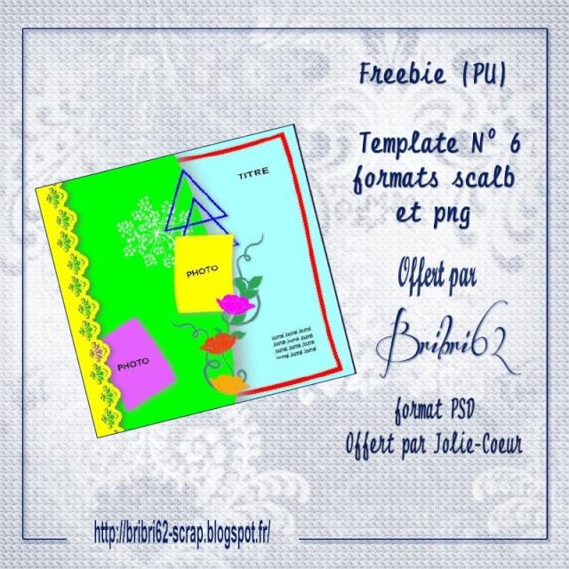 Freebie Template N° 6 Pv_tem10