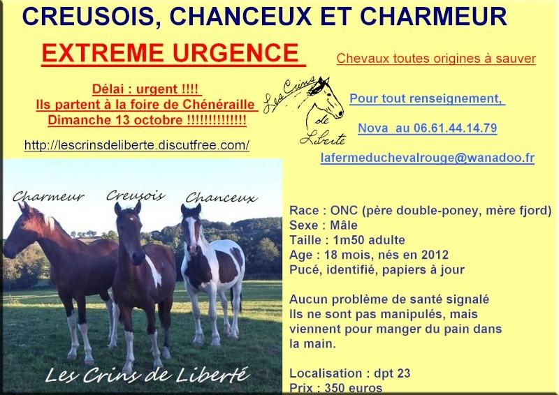 (Dpt 23) Charmeur,ONC, Sauvée par Jean paul (2013/2020) - Page 4 C_c_c112