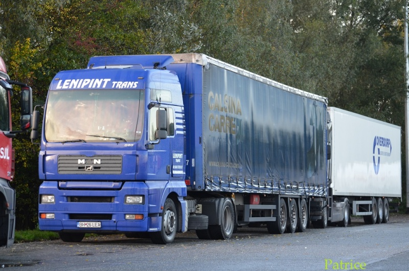Lenipint Trans  (Oradea) 016p11