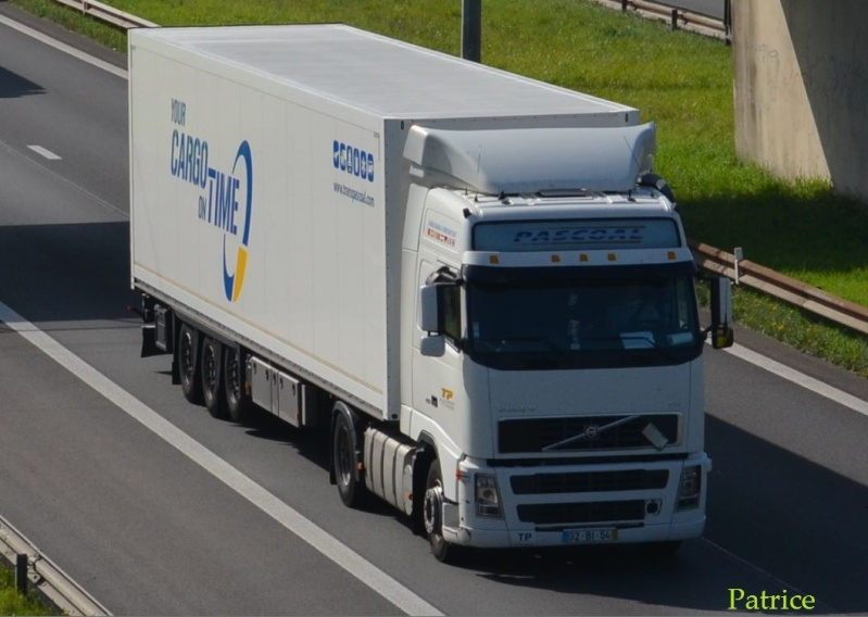 Transportes Pascoal - Page 2 104pp11