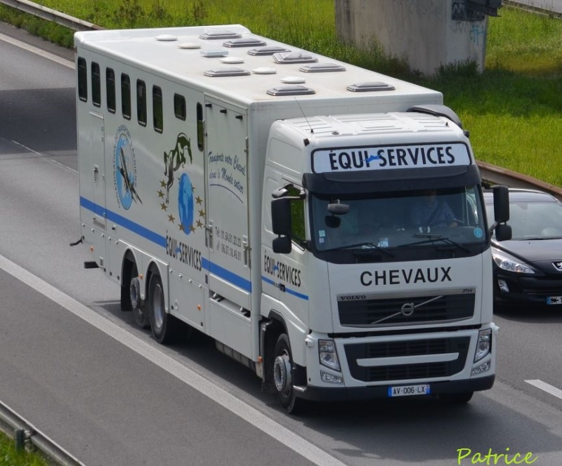 Transports de chevaux - Page 4 246pp13