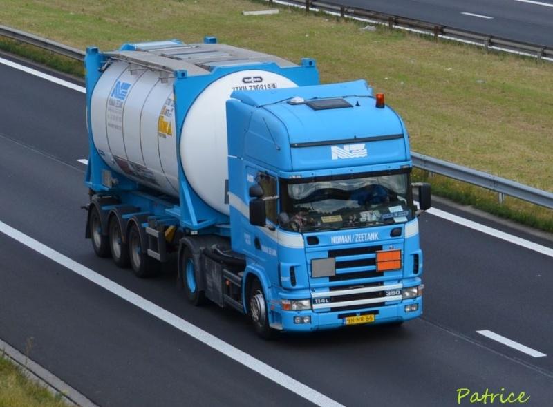 Nijman/Zeetank (Spijkenisse) 356pp11