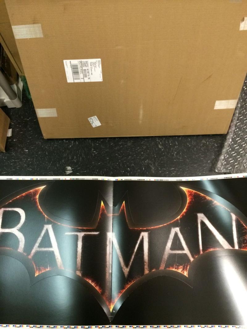 Batman : Arkham Knight Logo10