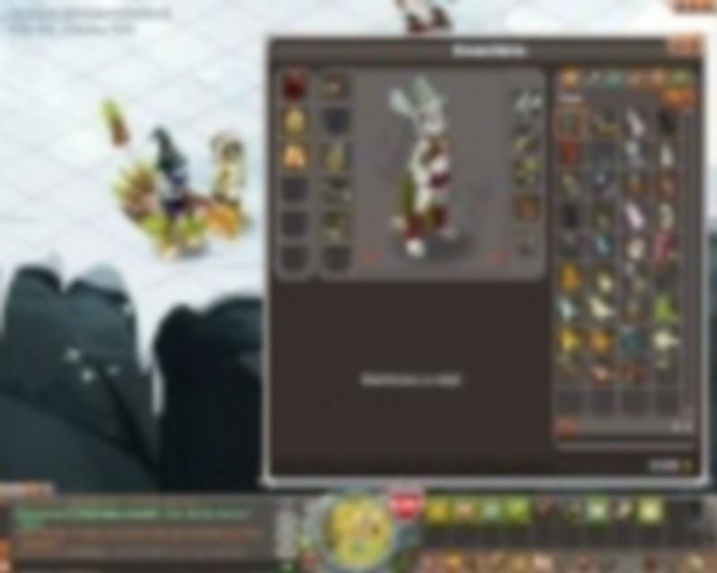 asec(hexa-gone dans la guilde) tournois des 10 ans de dofus  Asec_t10