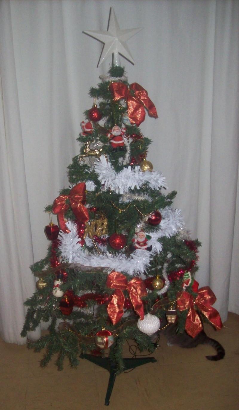 Votre décoration de Noel - Page 3 100_5715