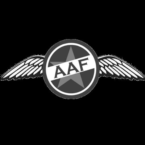 Anderslavian air force 010