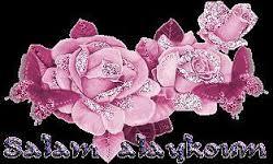 oui oui oui! Roses_10