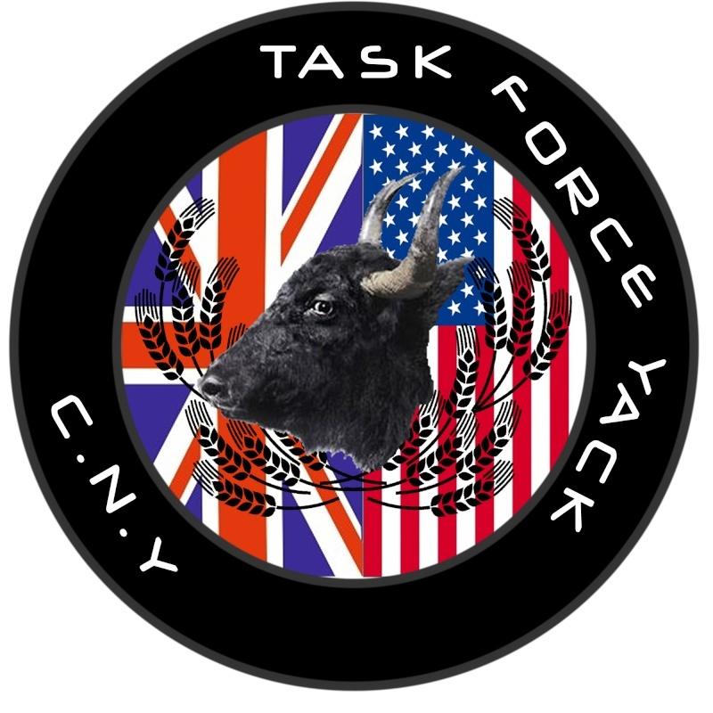 Task Force Yack  Tfy10