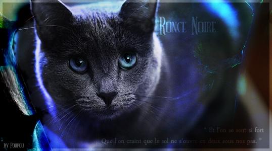Ronce Noire - Clan du Ciel. Final_12