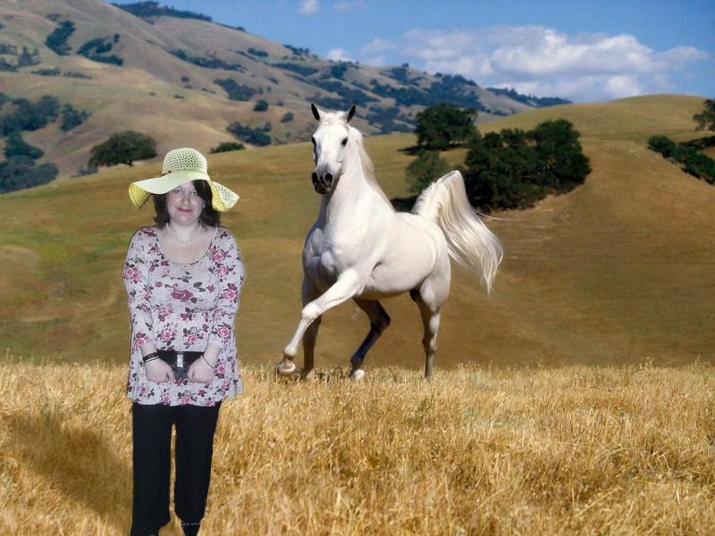 photo montage avec un cheval Horse-10