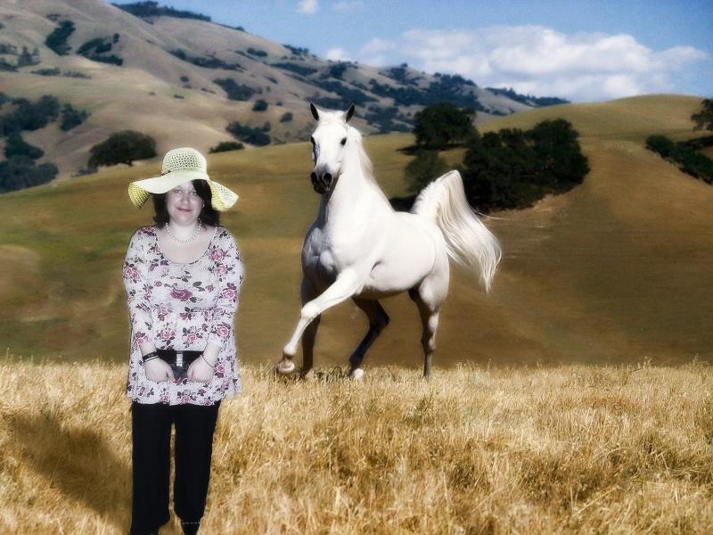 photo montage avec un cheval Horse-11