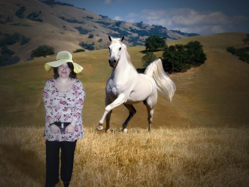 photo montage avec un cheval Scherm22