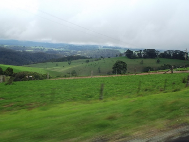 A Ride Through The Northern Tablelands - Page 4 A_ride14